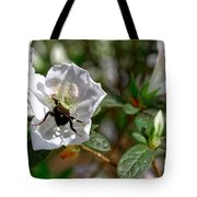 Bumblebee On White Azalea Tote Bag