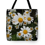 Bunch Of Daisy Tote Bag