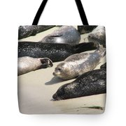 Bunch Of Harbor Seals Resting On A Beach Tote Bag