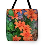 Bunch Of Orange Lilies Tote Bag