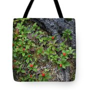 Bunchberry Berries Tote Bag