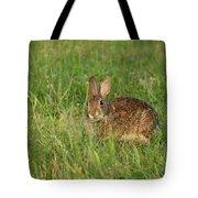 Bunny At Breakfast Tote Bag