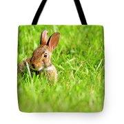 Bunny In Field  Tote Bag