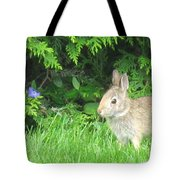 Bunny In Repose Tote Bag