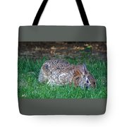 Bunny In The Backyard Tote Bag