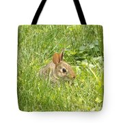Bunny In The Grass Tote Bag