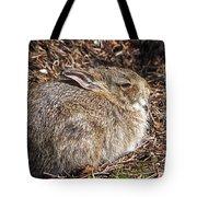 Bunny Siesta Tote Bag