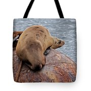 Buoy Break Tote Bag