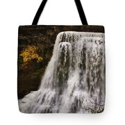 Burgess Fall Tennessee Tote Bag