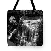 Burgess Lower Falls 2 Tote Bag