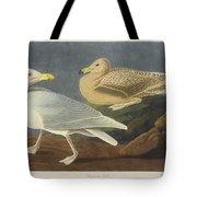 Burgomaster Gull Tote Bag