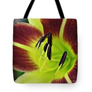 Burgundy And Yellow Lily Tote Bag