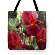 Burgundy Iris Flowers Tote Bag