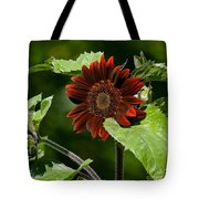 Burgundy Red Sunflower Tote Bag