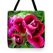 Burgundy Rose And Rose Bud Tote Bag