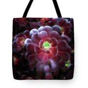 Burgundy Succulenta Tote Bag