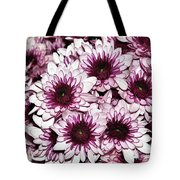 Burgundy White Crysanthemums Tote Bag