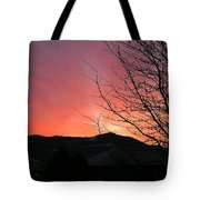 Burlington Sunrise Tote Bag