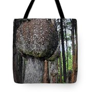 Burly Phantoms - Spruce Burls Beach One Olympic National Park Wa Tote Bag