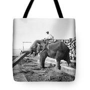 Burma: Elephant Tote Bag