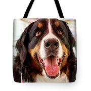 Burmese Mountain Dog Tote Bag