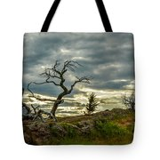 Burmis Tree And Wind Swept Pines Tote Bag