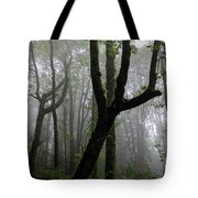 Burnaby Mountain Rainforest Tote Bag