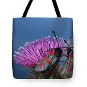 Burnet Moths Tote Bag