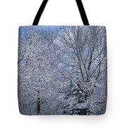Burnidge Winter Tote Bag