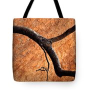 Burnt Orange Tote Bag