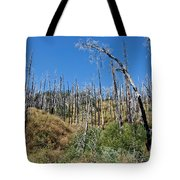 Burnt White Firs Tote Bag