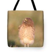 Burrowing Owl Fledgling II Tote Bag
