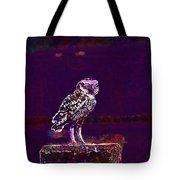 Burrowing Owl Small Owl Bird Nature  Tote Bag