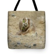 Burrowing Owl Tilted Head Tote Bag