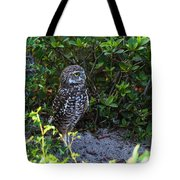 Burrowing Owls At Guard Tote Bag