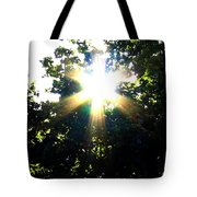 Burst Of Sunlight Tote Bag