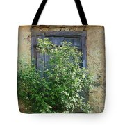 Bush And Window Tote Bag