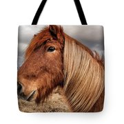Bushy Icelandic Horse Tote Bag by Pradeep Raja PRINTS