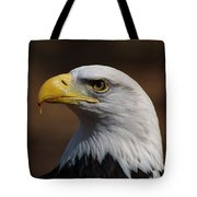 bust image of a Bald Eagle Tote Bag