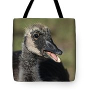 Busy Talking Tote Bag