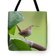 Busy Wren Tote Bag