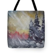 But The Weather Man Said.... Tote Bag