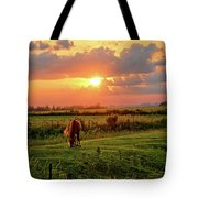 Butler Center Pasture Tote Bag