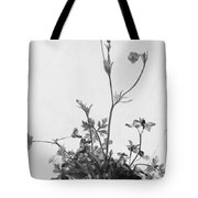 Butter Cups Red Clover And Plantain 1526 Tote Bag