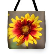 Butter Yellow And Crimson Red Coneflower Tote Bag