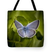 Butterfly 11 Tote Bag