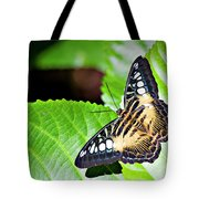 Butterfly 13a Tote Bag
