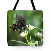 Butterfly 140 Tote Bag