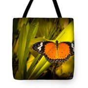 Butterfly 23 Tote Bag