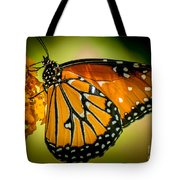 Butterfly 29 Tote Bag